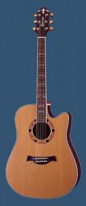 La mia nuova chitarra